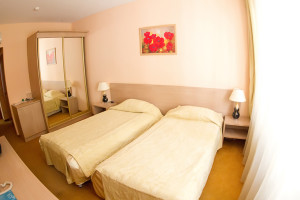 875938econom_room